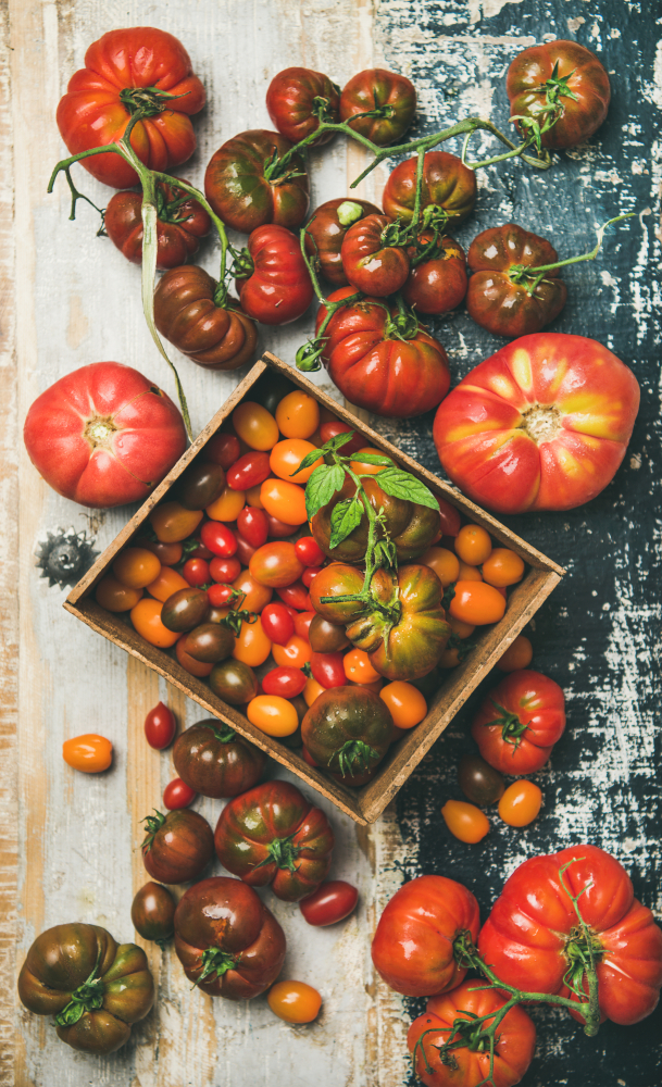 Flat-lay of heirloom tomatoes