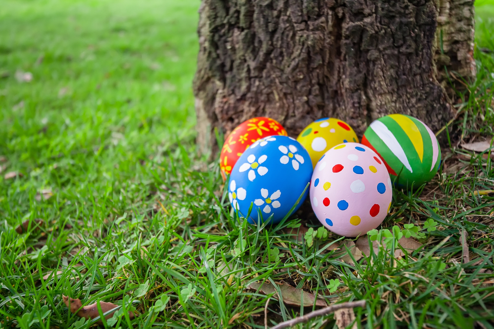 Painted Easter eggs sitting on the ground in front of a tree.