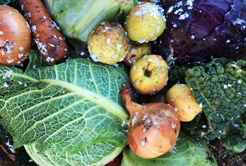 Winter Vegetables to Cook With Right Now