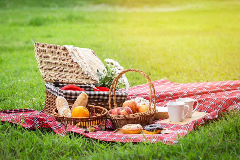 Open picnic basket on checkered blanket.